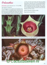 Pilbeam, J. - Stapeliads (2010) (blz 125).